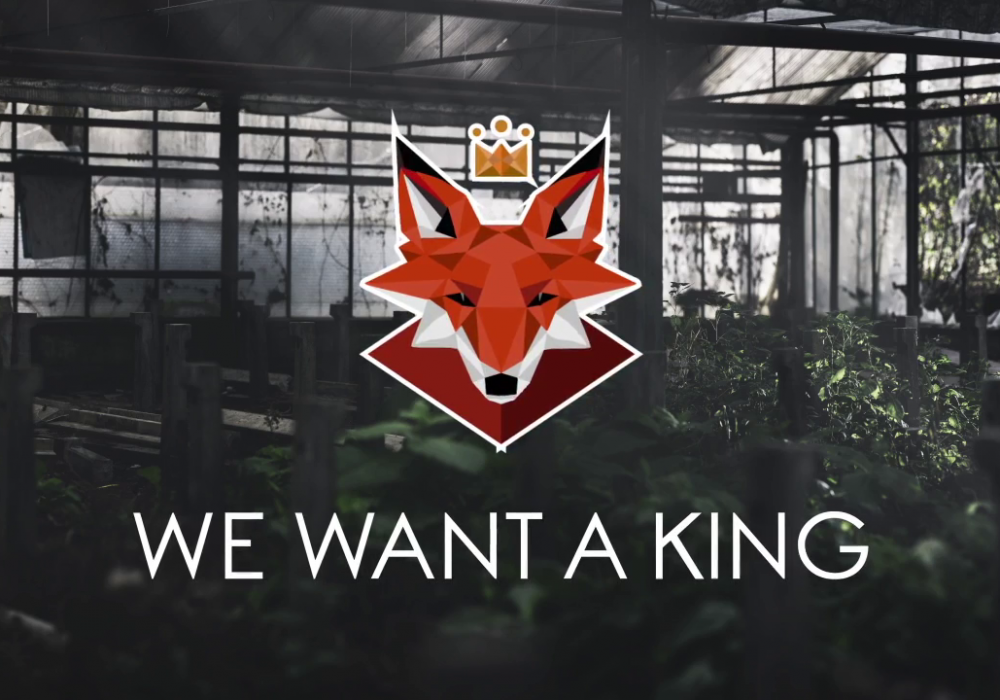 WE WANT A KING